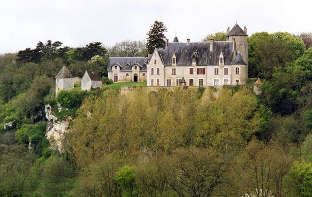 Chateau de la Guittiere_St Pierre de Maille.jpg