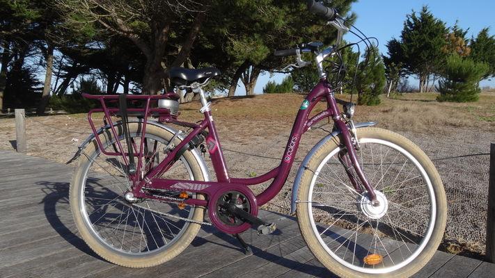 Vélo assistance électrique2.JPG