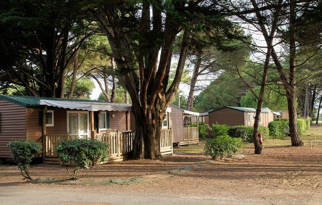 24_12_location-ile-de-re-camping-odalys-tamarins-plage-22.jpg