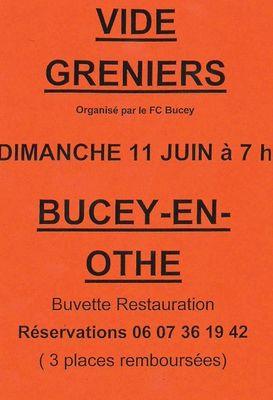 11 juin Bucey vide grenier.jpg