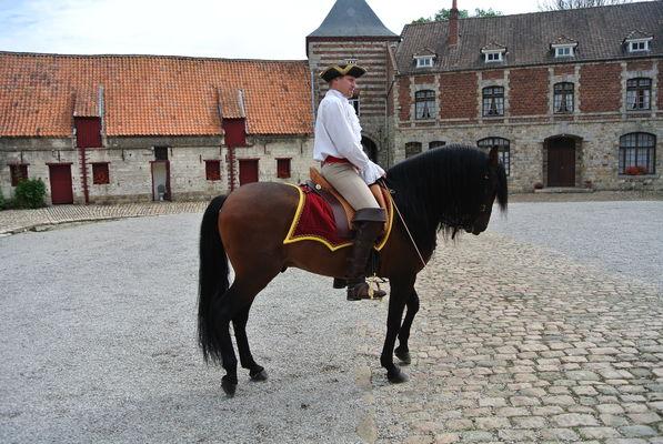 D'Artagnan - Copyright office tourisme Béthune Bruay.JPG