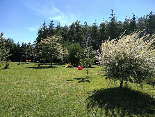 trayes-gite-mesange-bleue-jardin3.jpg