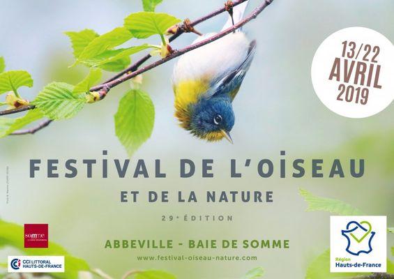 festival_2019_horizontal.jpg