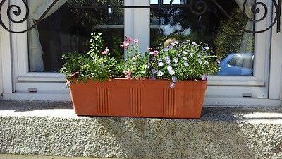 Lemontreehouse-jardinière-sit.jpg
