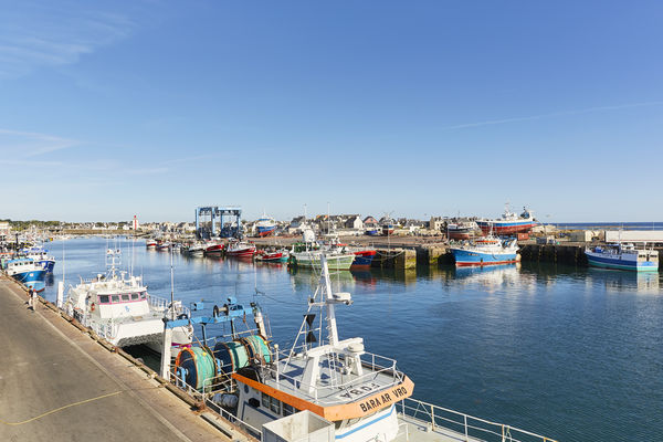 le guilvinec - port - arrivée des bateaux - octobre 2018 - Alexandre Lamoureux.jpg