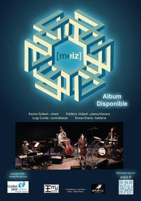 concert meiz 17 nov.jpg