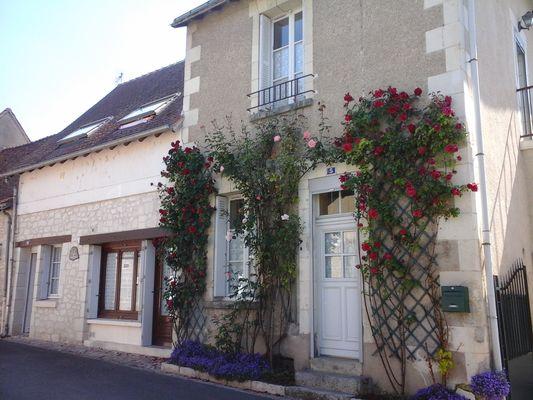 location_la_roche_posay_2_etoiles_Chatillon (4).jpg