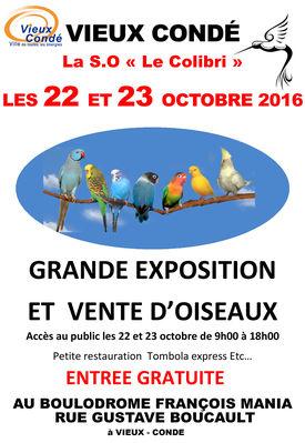 expo-oiseaux-vieux-condé.jpg
