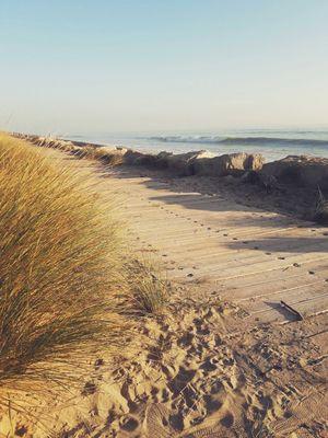 Chemin plage du petit-sergent.jpg