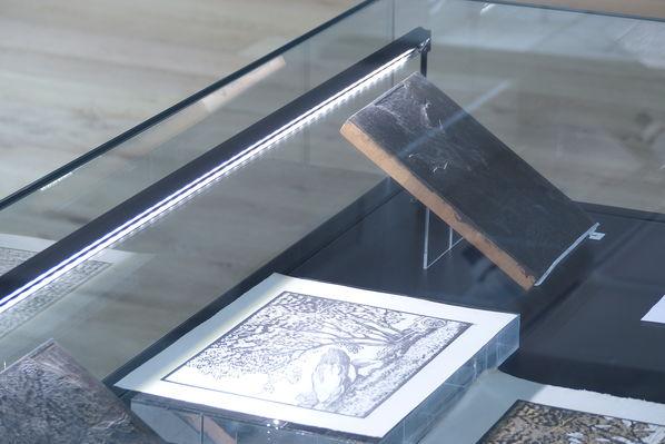 Musée PAH 2019 ©MuséePAH (5).JPG