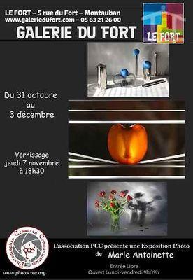 31.10 au 03.12.2019 exposition Pour le plaisir des yeux Galerie du Fort Montauban.jpg