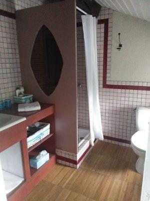 chambres-d-hotes-le-marais-picotin-85420-saint-pierre-le-vieux-15.jpg