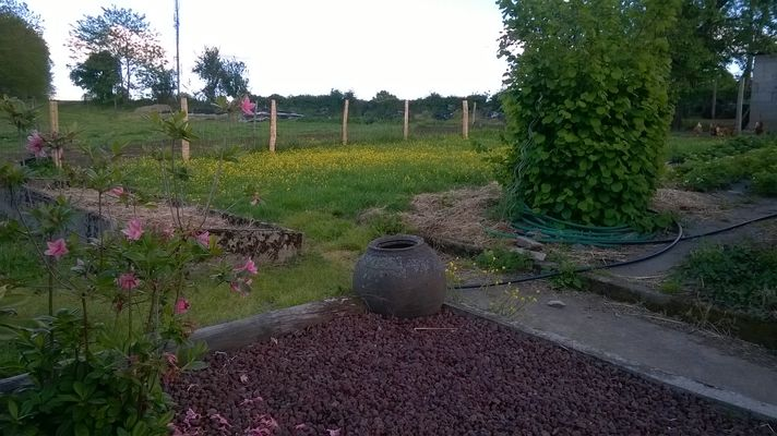 gite-a-la-ferme-chez-grand-mere-moncoutant-jardin.jpg
