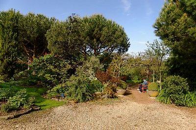 jardins Cistus (pw) 5792-sit.jpg