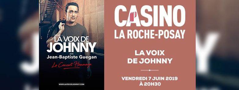 Concert_sosie_vocal_Johnny_Hallyday_Casino_La_Roche_Posay.jpg