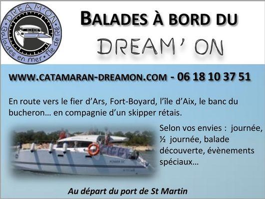 dreamon-promenades-catamaran-iledere-flyer.jpg