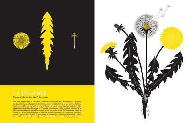 180221-expo-herbiers.jpg