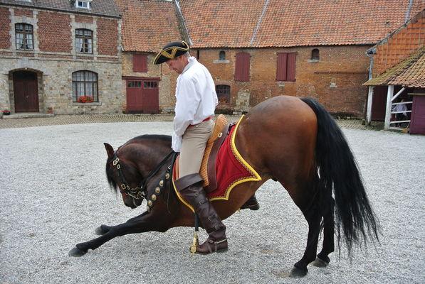 D'Artagnan2 - Copyright office tourisme Bethune Bruay .JPG
