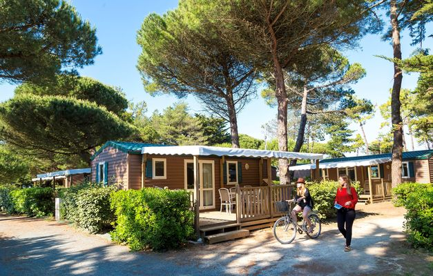 8_12_tmp47BB_location-ile-de-re-camping-odalys-tamarins-plage-9.jpg