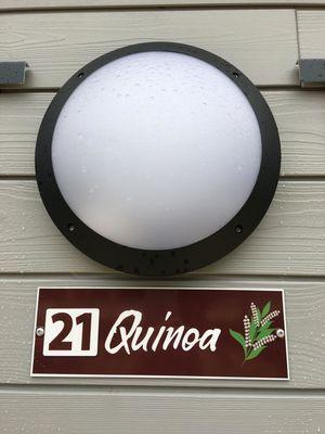 quinoa (3).jpg