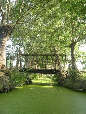 Embarcadere-de-l-abbaye-marais-poitevin-maillezais-85420-15.jpg