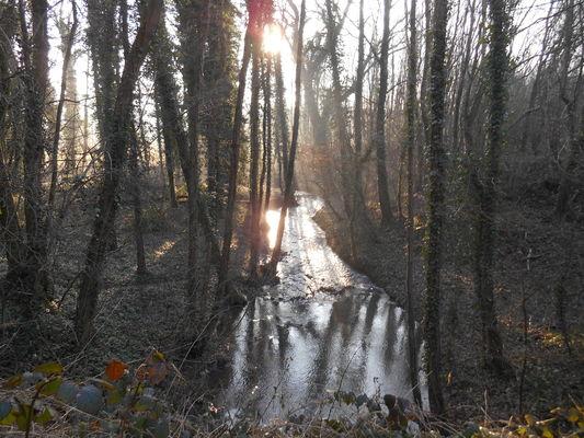 Robinsons Vallée de la Lawe - Copyright OTBB.JPG