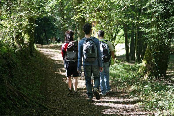 Balade sur le chemin des Arts à Latouille-Lentillac--Lot Tourisme - J. Morel.jpg