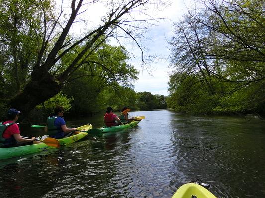 sortie_canoe_la_Creuse_La_Roche_Posay (15).JPG