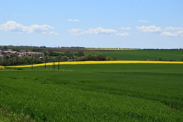 sérigné pays de Fontenay-Vendée 85200 - 6.jpg