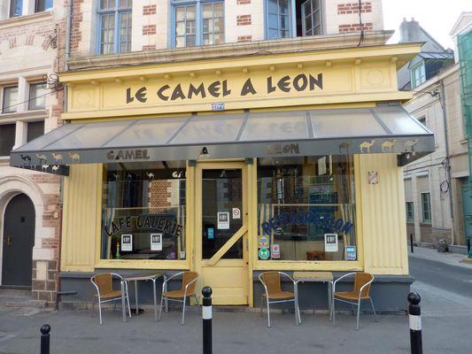 camel à léon.jpg