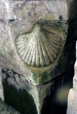coquille st jacques.jpg