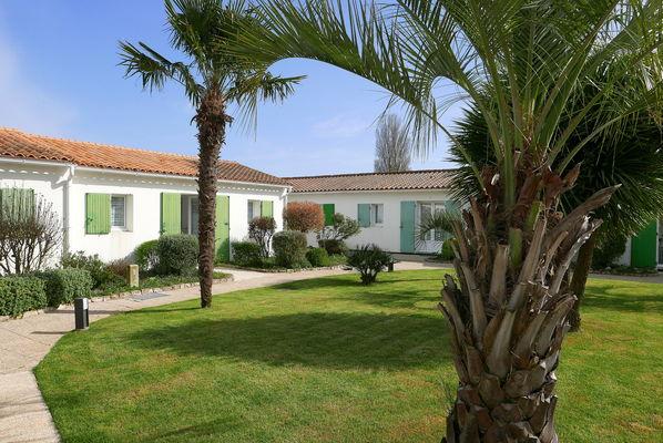 Jardin avec palmiers..JPG