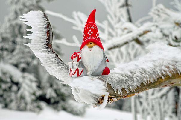 Noël ©Pixabay.jpg