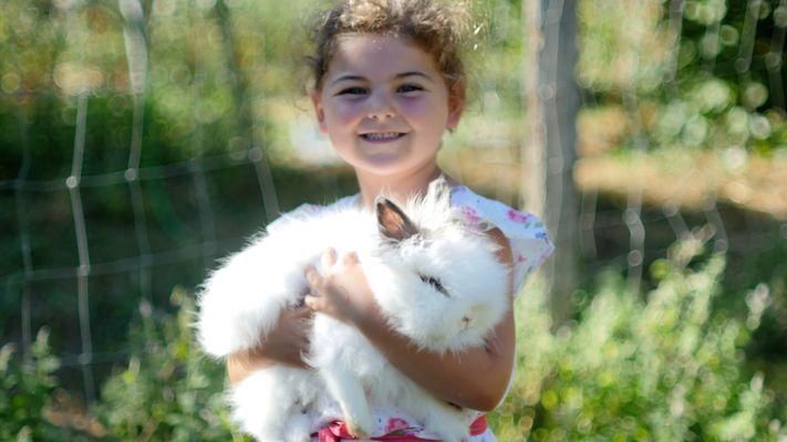 Isla bunny.jpg