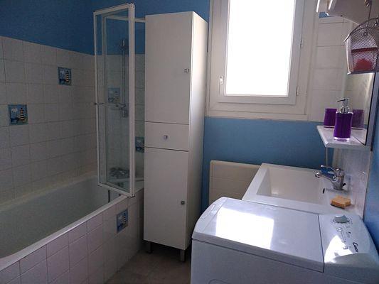 trayes-gite-mesange-bleue-salle-de-bain.jpg