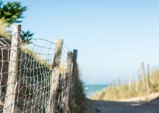 Chemin vers la plage de Sainte Marie de Ré.jpeg
