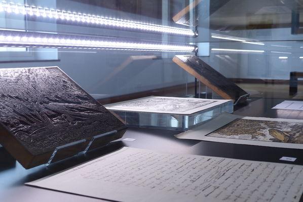 Musée PAH 2019 ©MuséePAH (11).JPG