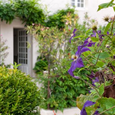 La maison Douce ile de Ré - Le Jardin (20).jpg