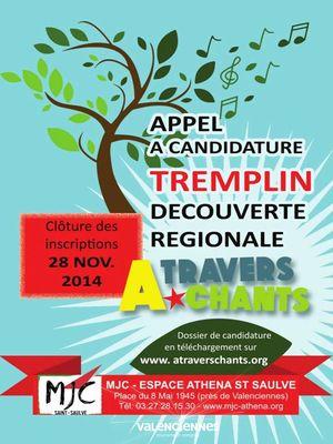 tremplin-festival-a-travers-chants-valencienens-tourisme-2014.jpg