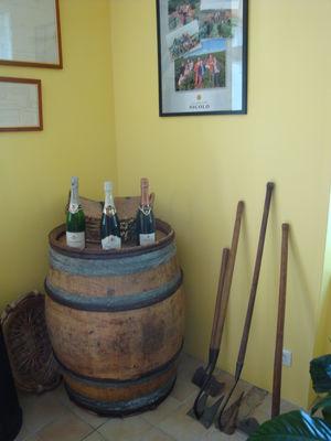La France Secrete a velo - Champagne Nicolo (3).JPG