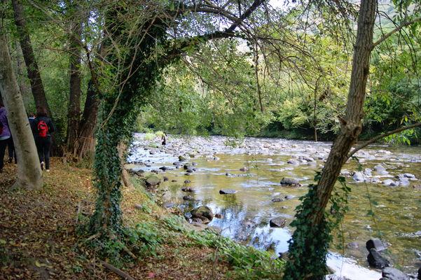 sur les rives de l'Ariège.jpg
