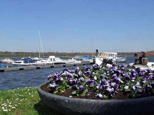 Port de Plaisance de Mons 2.JPG