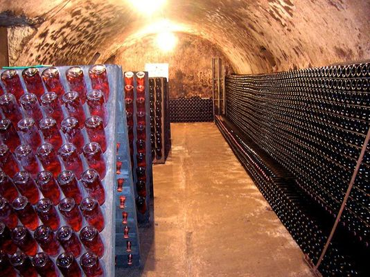 Caves P_M_ROGER.jpg