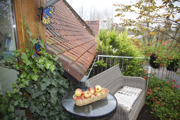 fermedelablanchefontaine-balconet.jpeg.jpg