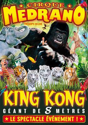 Affiche-MEDRANO-KingKong-valenciennes-tourisme.jpg
