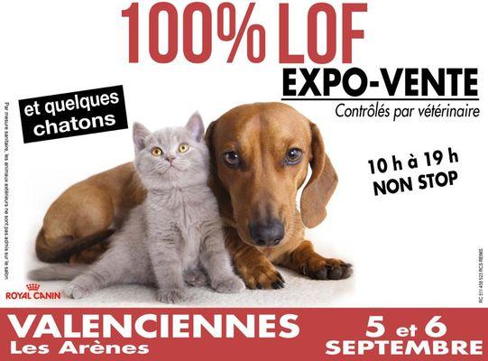 100%-lof-arènes-petite-foret-valenciennes-tourisme.jpg