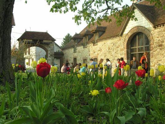 bat_est_+_tulipe[1].JPG