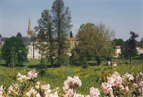 Jardin des Abies.jpg