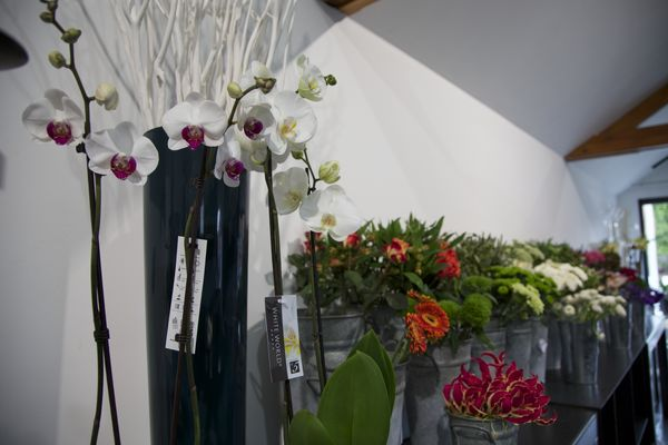 atelierkla-fleur1-mons.jpg