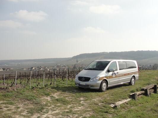 Mercedes dans les vignes Champagne 2.JPG
